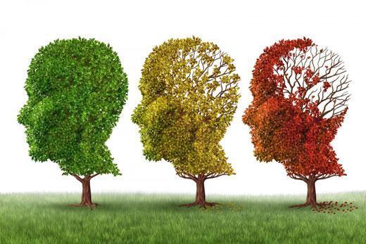 مغز چگونه اطلاعات را به یاد می آورد؟